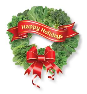 happy-holidays-wreath-7